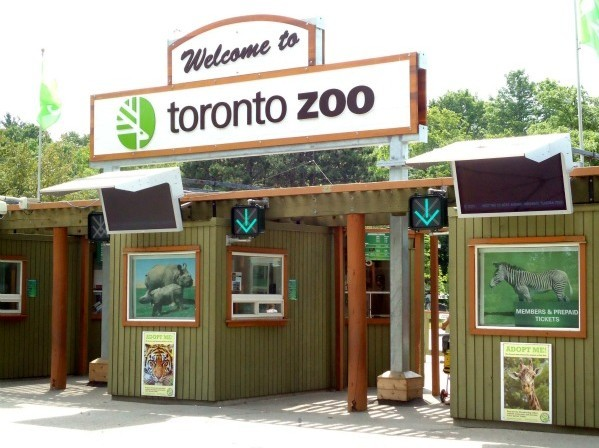 多伦多动物园开办于1974年8月15日