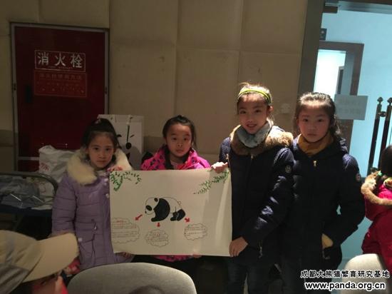 大熊猫集体拜年图片